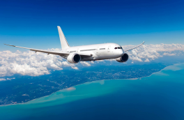 ۲ سلفی که لحظاتی قبل از سقوط هواپیمای مسافربری گرفته شد/ تصویر