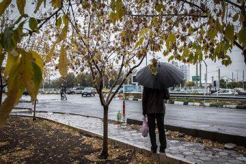 حال و هوای تهران و شهروندان در روز بارانی پاییز/ تصاویر