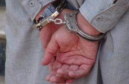 سارقان حرفه ای باند مخوف دماغ دستگیر شدند