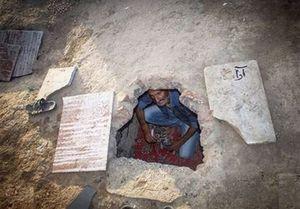 سکونت ۱۰۰۰ گورخواب در سیستان+ عکس