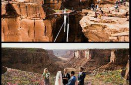 مراسم ازدواج در ارتقاع/ تصویر
