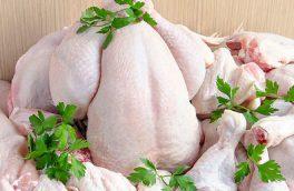 مرغ همچنان در کانال ۱۱۰۰۰ تومان ماند